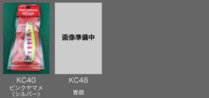 レジーマ KCカラー 40-48